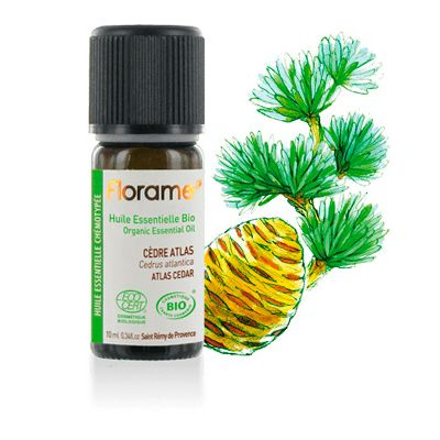 Cedar essential oil van Florame, 1 x 10 ml