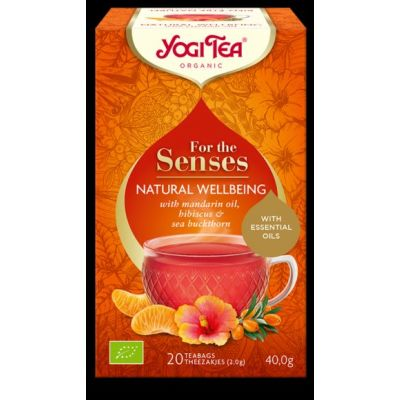 Natural wellbeing van Yogi Tea, 6 x 20 builtjes